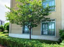 Апартамент с двориком на первой линии в Черноморце. Фото 7