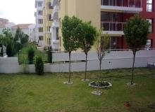 Трехкомнатная квартира в Шато Несебр, Святой Влас. Фото 13