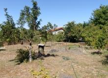 Два дома с земельным участком в селе Дюлево. Фото 4